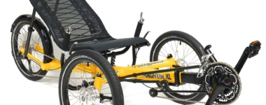 Assorted Recumbent Trikes